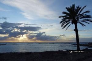 Cypr – wyspa Afrodyty, a może kocia wyspa